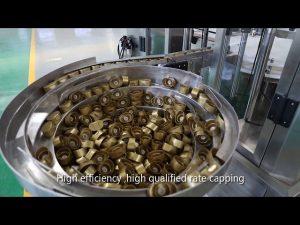 salsa automatica servo pistone, miele, marmellata, linea di riempimento liquido ad alta viscosità