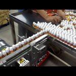 Riempitrice automatica per vuoto a 10 teste rotante