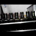 Riempitrice per bottiglie di olio a 6 ugelli lineare completamente automatica con olio d'oliva